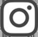 insta_icon